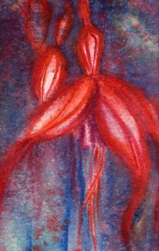 Fuchsia magellica, Deora De, Mary Dillon